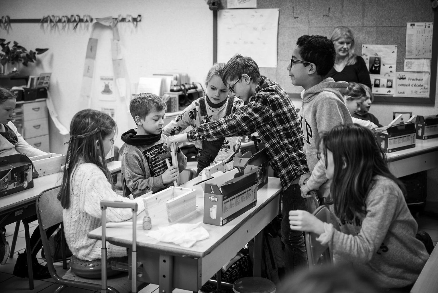 Toute la classe participe, Atelier Nichoir donné par Bruno Marchal, Aurore Delsoir Photographie