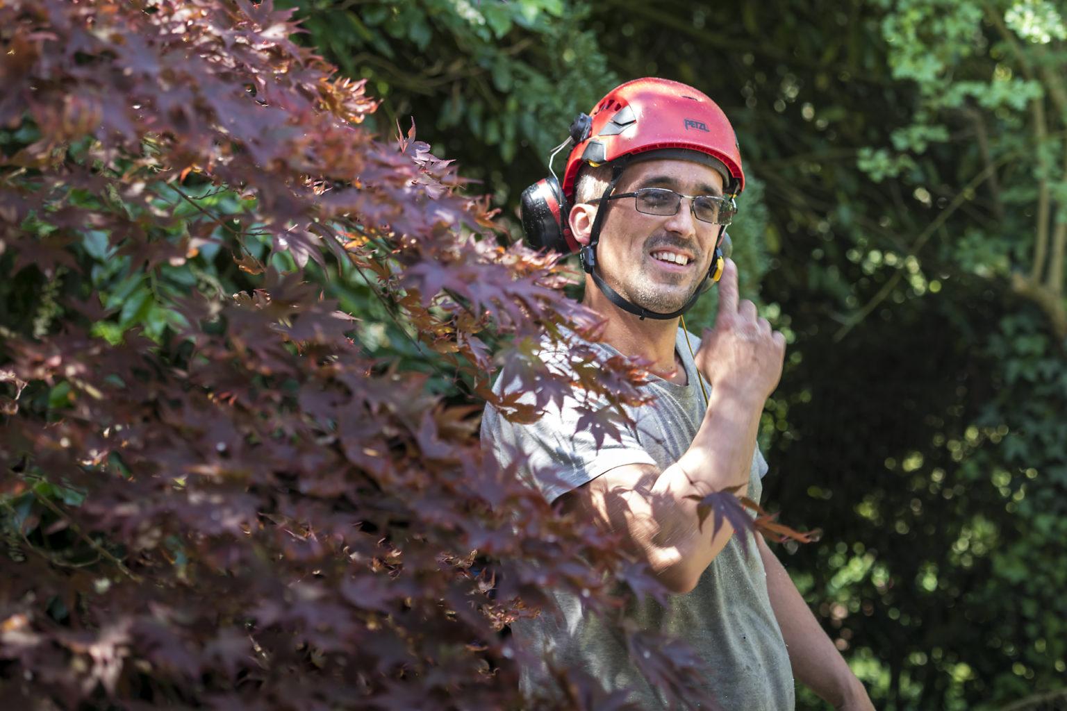 Portrait de Nico l'arboriste, arboristepar Aurore Delsoir photographe d'entreprise
